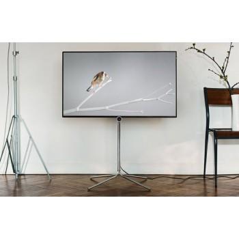 tv loewe bild 1. Black Bedroom Furniture Sets. Home Design Ideas